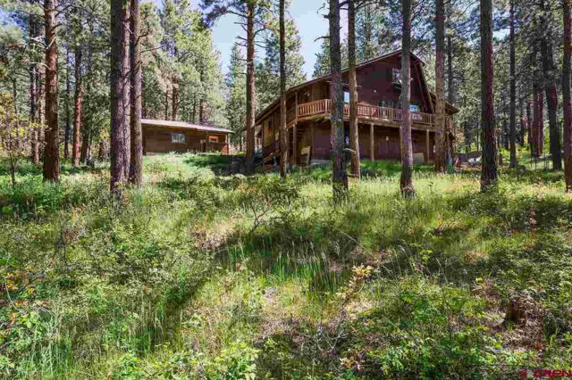 685 Rosalie Drive, Durango, CO 81301 (MLS #747894) :: Keller Williams CO West / Mountain Coast Group