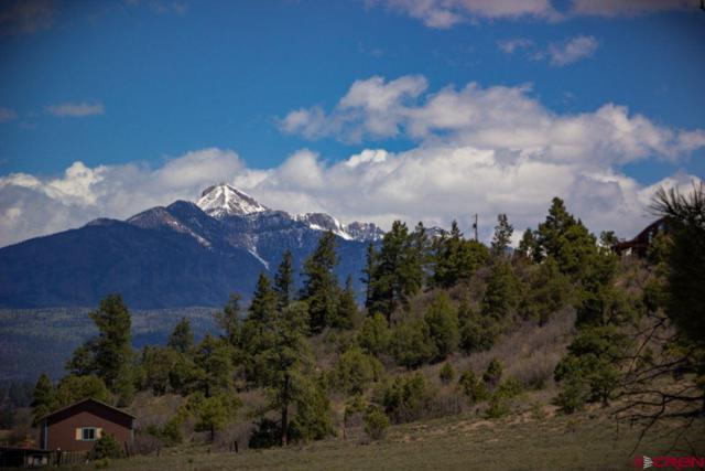 294 Bristlecone Drive, Pagosa Springs, CO 81147 (MLS #747912) :: Durango Home Sales