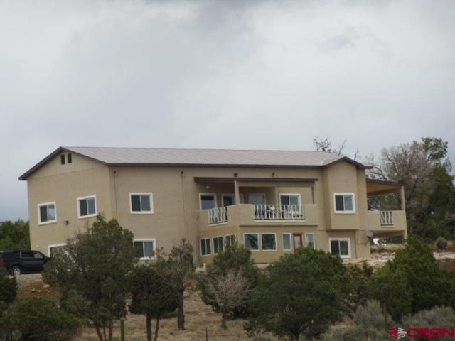 13990 Road 32.1, Mancos, CO 81321 (MLS #747936) :: CapRock Real Estate, LLC