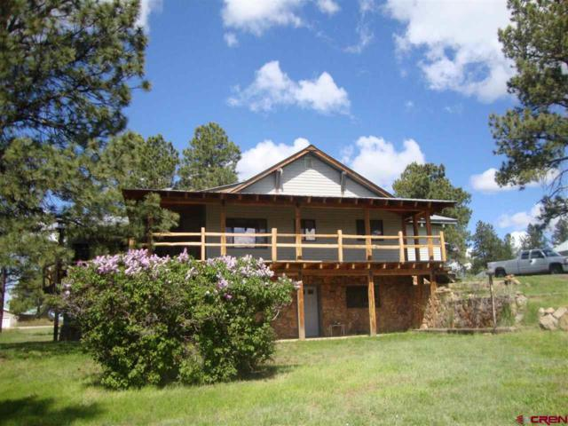 15100 Road 35.3, Mancos, CO 81328 (MLS #747938) :: CapRock Real Estate, LLC