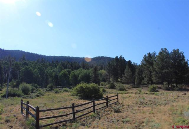 564 Escondida Dr., South Fork, CO 81154 (MLS #747949) :: Durango Home Sales