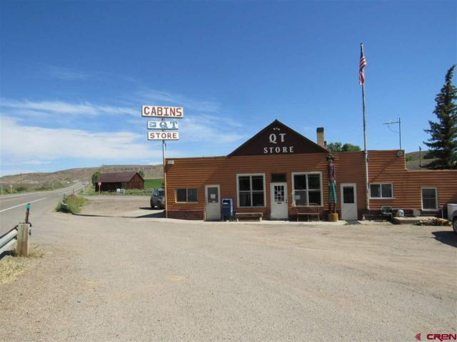51387 E Us Highway 50 Highway, Parlin, CO 81239 (MLS #747963) :: Durango Home Sales