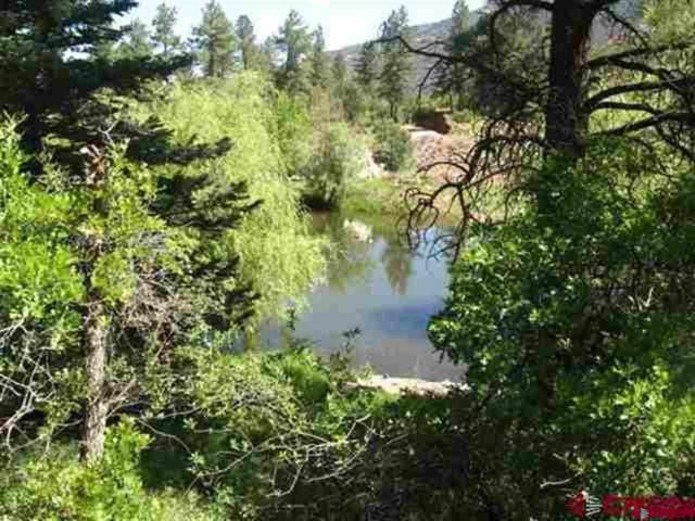 819 Mary's Road, Ridgway, CO 81432 (MLS #748043) :: CapRock Real Estate, LLC