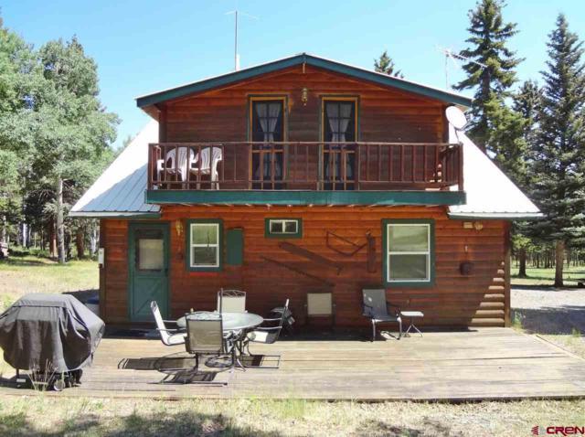 3966 Blue Mesa Drive, Powderhorn, CO 81243 (MLS #748070) :: The Dawn Howe Real Estate Network | Keller Williams Colorado West Realty