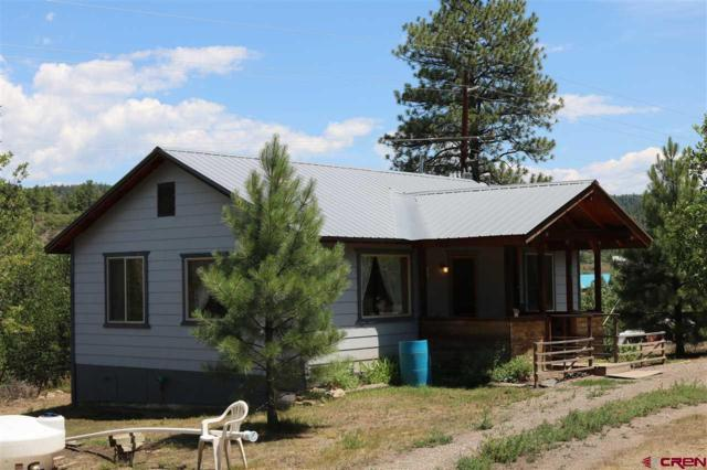 114 & 144 River Run Drive, Pagosa Springs, CO 81147 (MLS #748106) :: CapRock Real Estate, LLC