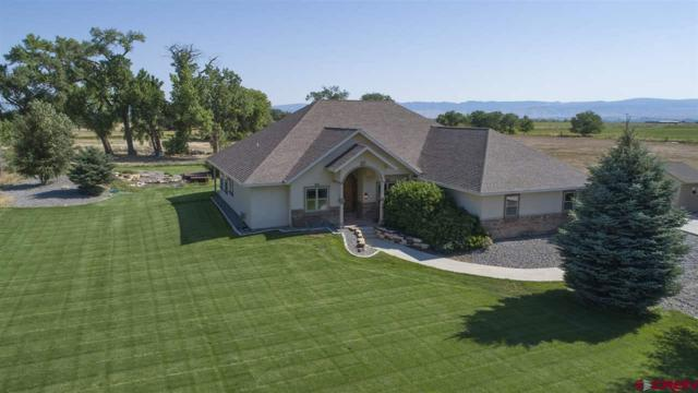 63169 Percheron Court, Montrose, CO 81403 (MLS #748109) :: Keller Williams CO West / Mountain Coast Group