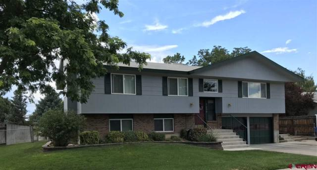 1234 Manchester Drive, Montrose, CO 81401 (MLS #748111) :: CapRock Real Estate, LLC
