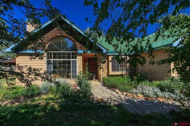 211 Sundown Circle, Pagosa Springs, CO 81147 (MLS #748113) :: Keller Williams CO West / Mountain Coast Group