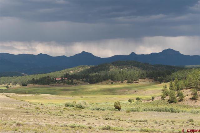 X Tierra Del Oro Drive, Pagosa Springs, CO 81147 (MLS #748198) :: Durango Home Sales