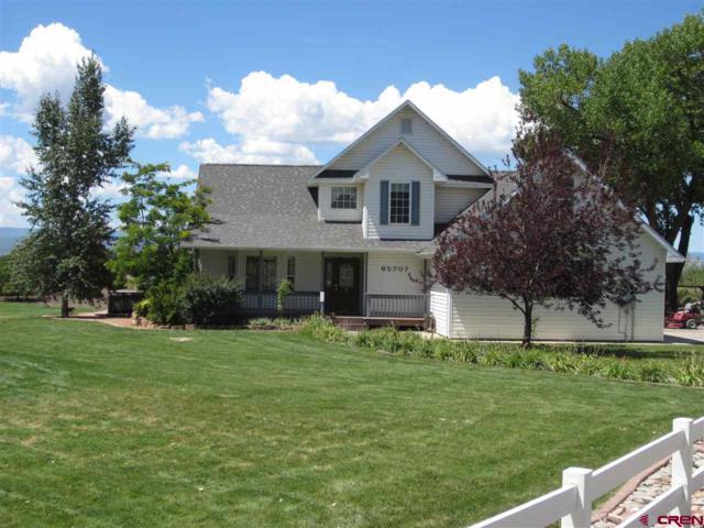 65707 Little Way, Montrose, CO 81401 (MLS #748217) :: CapRock Real Estate, LLC