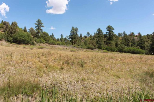 121 Elbert Place, Pagosa Springs, CO 81147 (MLS #748219) :: CapRock Real Estate, LLC