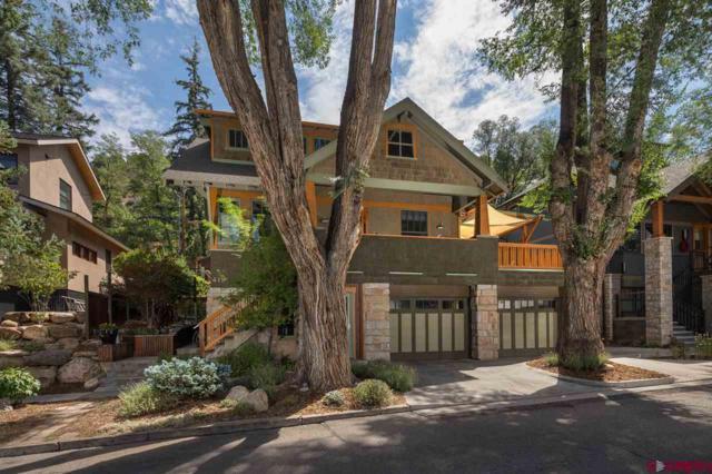 419 E 12th Street, Durango, CO 81301 (MLS #748230) :: Durango Mountain Realty
