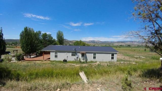 788 Cr 216, Durango, CO 81303 (MLS #748302) :: Durango Mountain Realty