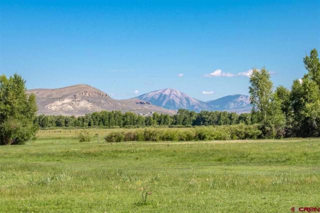 Lot 5 135 Highway, Gunnison, CO 81230 (MLS #748314) :: The Dawn Howe Real Estate Network | Keller Williams Colorado West Realty