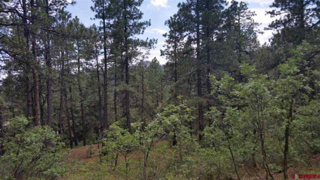 tbd Groves Drive, Durango, CO 81301 (MLS #748342) :: Keller Williams CO West / Mountain Coast Group
