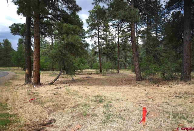 343 Engine Creek Trail, Durango, CO 81301 (MLS #748432) :: Durango Home Sales