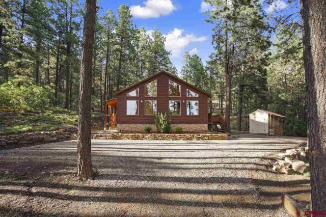 921 Pine Valley, Bayfield, CO 81122 (MLS #748442) :: Durango Home Sales