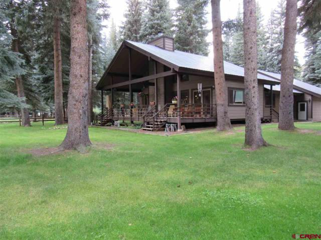 12 Shaggy Mane Circle, Bayfield, CO 81122 (MLS #748476) :: CapRock Real Estate, LLC