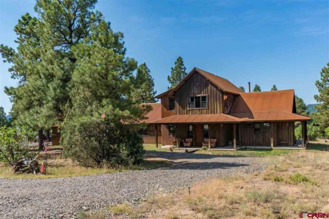3361 Meadows Drive, Pagosa Springs, CO 81147 (MLS #748500) :: CapRock Real Estate, LLC