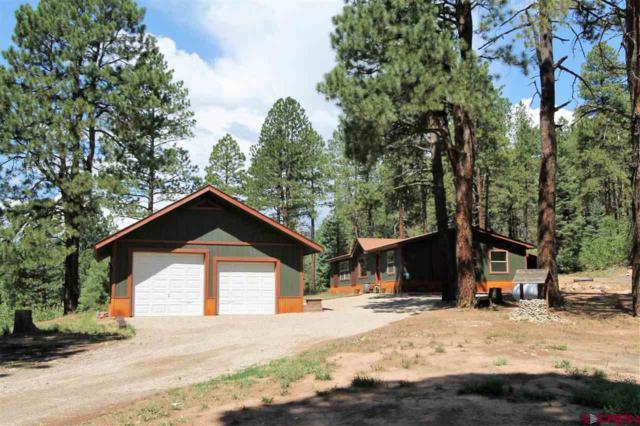 235 Aspen Drive, Durango, CO 81301 (MLS #748510) :: Durango Mountain Realty