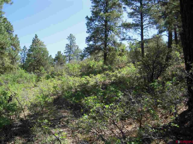 TBD Vista Lane, Bayfield, CO 81122 (MLS #748513) :: CapRock Real Estate, LLC