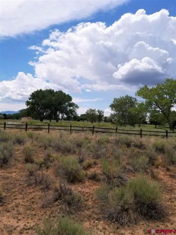 Lot 11 Golf Course Lane, Cortez, CO 81321 (MLS #748559) :: Durango Home Sales