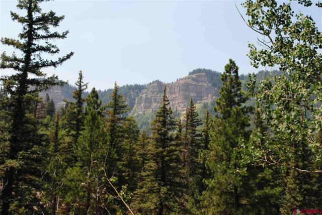 30 Aspen, Durango, CO 81301 (MLS #748629) :: CapRock Real Estate, LLC
