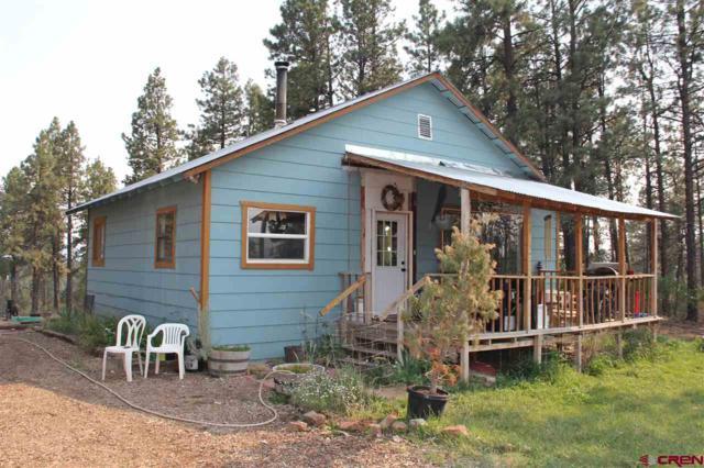307 Deer Trail Road, Durango, CO 81303 (MLS #748640) :: Durango Home Sales