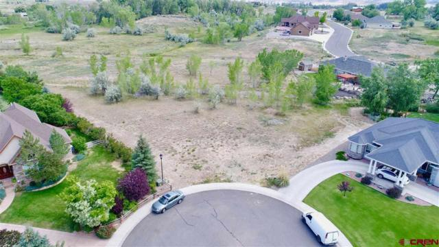 4225 Waterfall Drive, Montrose, CO 81401 (MLS #748657) :: CapRock Real Estate, LLC