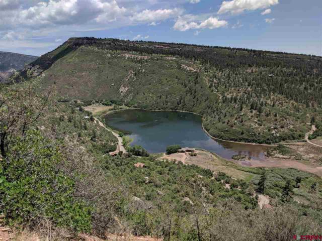 TBD Cr 205, Durango, CO 81301 (MLS #748663) :: Durango Mountain Realty