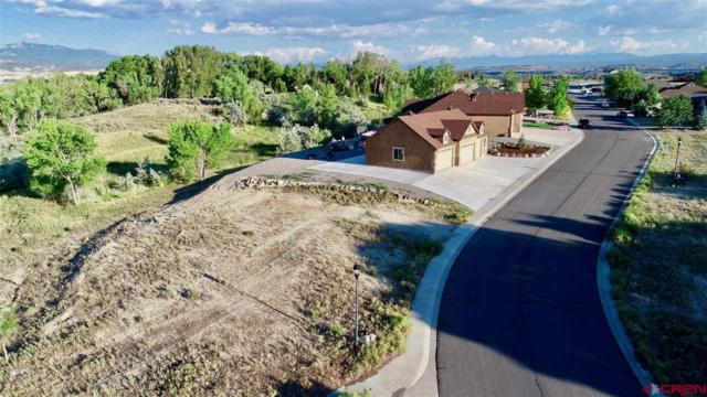 TBD Crestview Drive, Montrose, CO 81401 (MLS #748668) :: CapRock Real Estate, LLC
