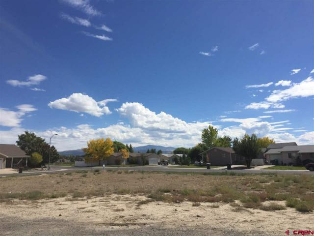 Lot 115 Whitehouse Drive, Montrose, CO 81401 (MLS #748702) :: Durango Home Sales