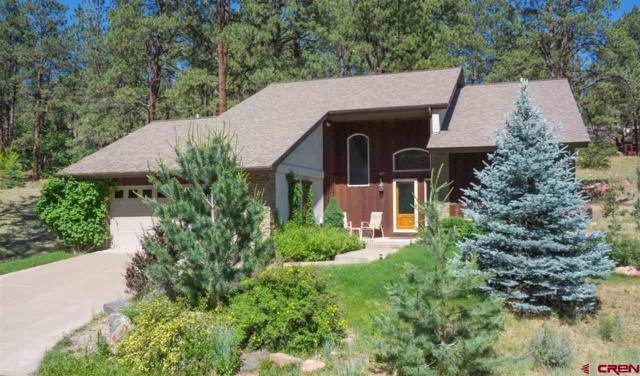 491 Hogan Circle, Durango, CO 81301 (MLS #748743) :: Durango Mountain Realty