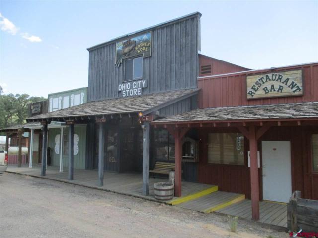 8458 County Road 76, Ohio City, CO 81237 (MLS #748827) :: Durango Home Sales