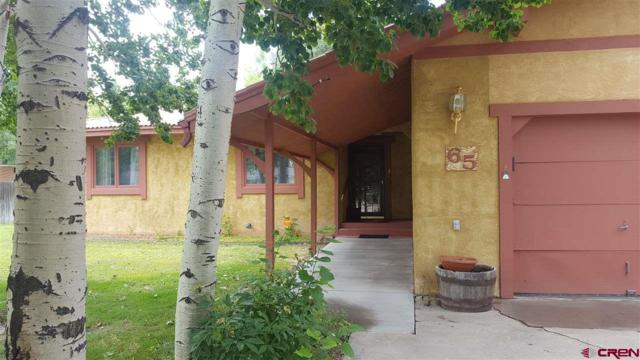 65 Pioneer Road, Monte Vista, CO 81144 (MLS #748853) :: Durango Home Sales