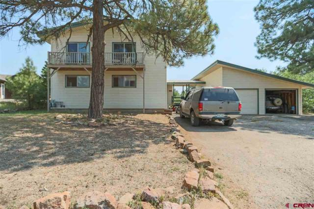 214 E Golf Place, Pagosa Springs, CO 81147 (MLS #748861) :: Keller Williams CO West / Mountain Coast Group