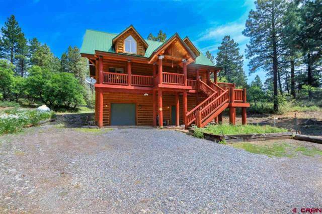 162 Jj Junction, Pagosa Springs, CO 81147 (MLS #748863) :: Durango Home Sales