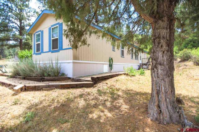 606 Dyke Boulevard, Pagosa Springs, CO 81147 (MLS #748873) :: Durango Home Sales