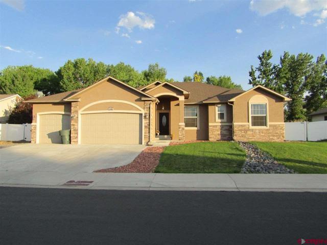 1750 Buffalo Street, Delta, CO 81416 (MLS #748895) :: CapRock Real Estate, LLC