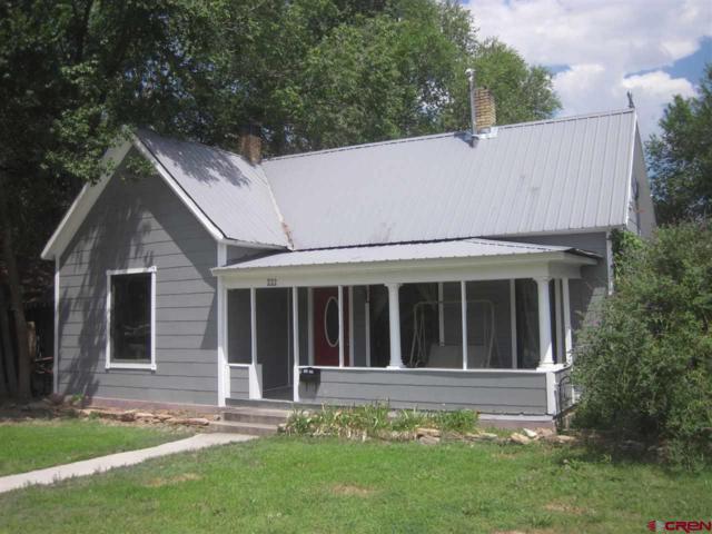 222 Dodge Street, Delta, CO 81416 (MLS #748911) :: Durango Home Sales
