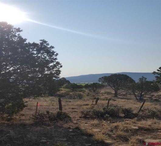 X Piedra Prkwy/Milton Lane, Arboles, CO 81121 (MLS #748950) :: Durango Home Sales