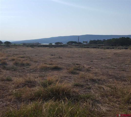 X Piedra Prkwy/Milton Lane, Arboles, CO 81121 (MLS #748951) :: Durango Home Sales