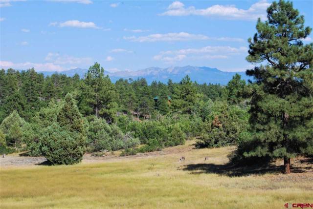 512 Harvard Avenue, Pagosa Springs, CO 81147 (MLS #748966) :: CapRock Real Estate, LLC
