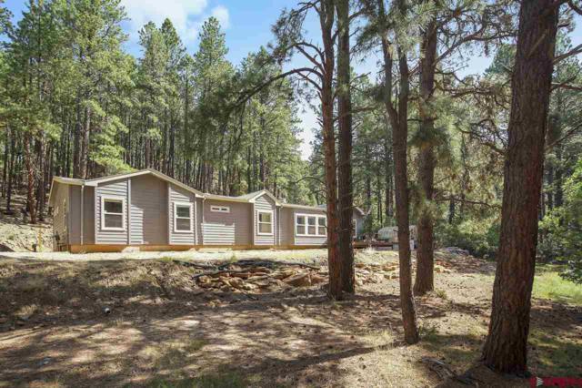 79 Cub Court, Bayfield, CO 81122 (MLS #748977) :: Durango Home Sales