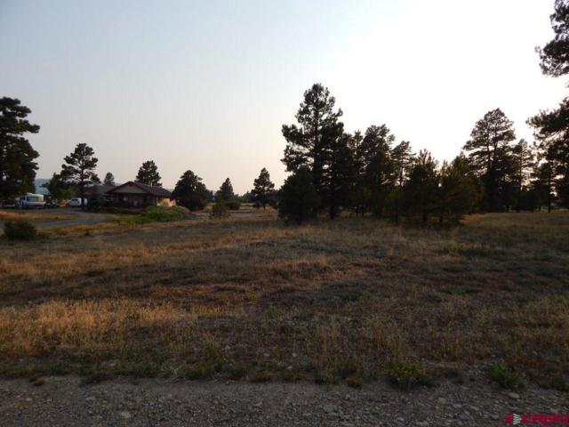 102 Roosevelt, Pagosa Springs, CO 81147 (MLS #748996) :: Durango Home Sales