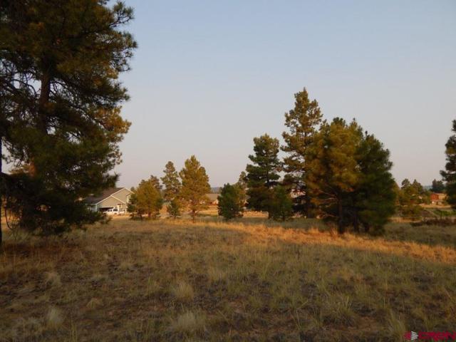 27 Pioneer, Pagosa Springs, CO 81147 (MLS #748998) :: Durango Home Sales