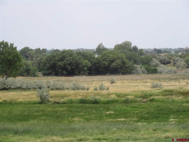 13916 Road 25.1, Cortez, CO 81321 (MLS #749010) :: Durango Home Sales
