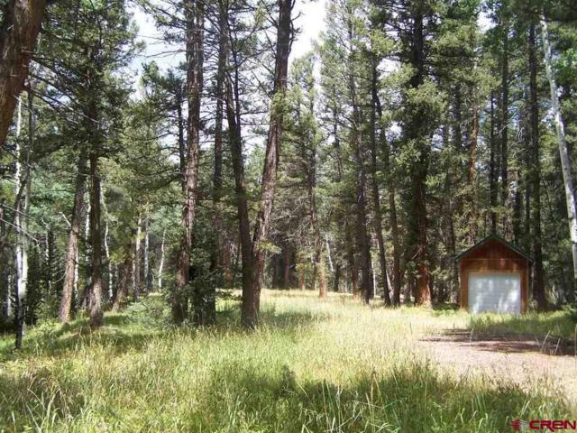 105 Aspen Trail, Cimarron, CO 81220 (MLS #749039) :: Durango Home Sales