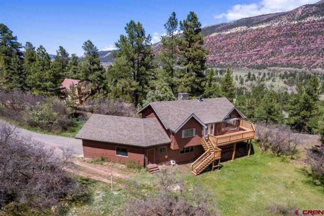 102 Pine Ridge Drive, Ridgway, CO 81432 (MLS #749059) :: CapRock Real Estate, LLC