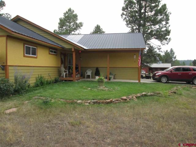 274 Sundown Circle, Pagosa Springs, CO 81147 (MLS #749081) :: Durango Home Sales